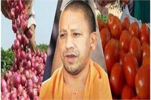 onion tomatoes prices raise anxiety of cm yogi