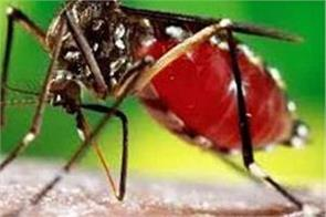 more than 5 lakh bills  hearing in the outbreak of dengue