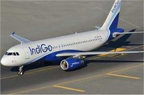 wild boar flight of the rocky indigo aircraft
