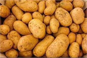 potato farmers are poor  one kilo goods sold in 25 paisa