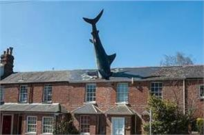 bizarre house with shark in roof sub offbeat creur