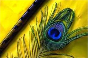 peacock feathers will fade with luck and remove problems