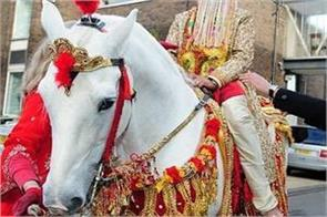 delhi  groom will not be able to carry a procession on a mare