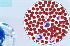 australia  cancer drug approved for human use