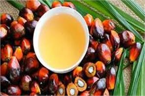 crude palm oil futures prices rose by 0 38 per cent