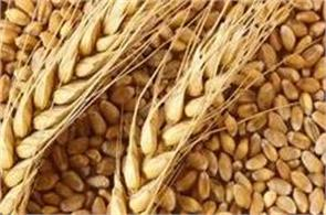 wheat and other cereals continue to decline for the second consecutive week
