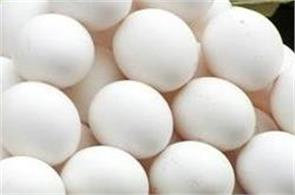 plastic egg sold in the market  be careful