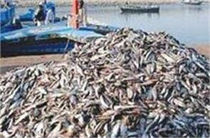 promotion of fisheries