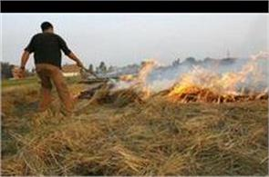 punjab seeks rs 2 000 crore from centre to fight stubble burning