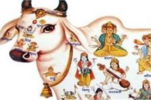 benefits of gau parikrama