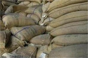 over 90  of food grains in fci  s warehouses in maharashtra are getting worse