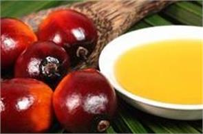 india  s palm oil import spurts 2 25  in april