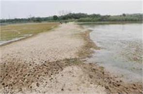 sukna sanctury  s check dams upgrade