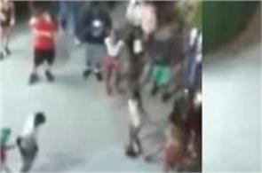 shootable facebook live on viral on social media