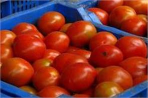 tomatoes in delhi rs 60 70 per kg