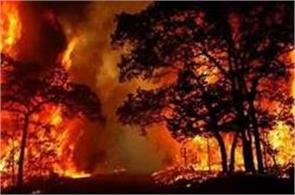 64 deaths due to fire in portugal hope to overtake