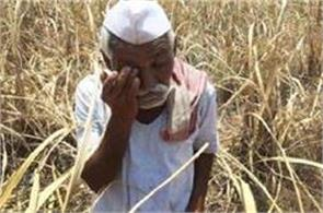 politicians who are   roasting rotis   on farmers     worries