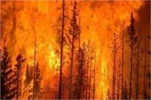 forced evacuation of 36 000 people in canada over forest fire outbreak