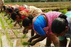 sowing of kharif crops in 222 lakh hectares