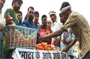 out of the up assembly  congressmen sold 10 kg of tomatoes