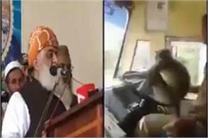 pakistani leader fazlur rahman compares the monkey to imran khan