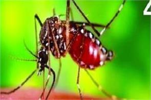 alert in gujarat about zika yirus