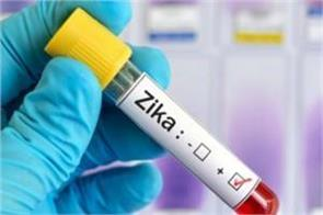 zika virus in jaipur