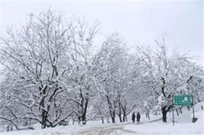 snow storm in kashmir