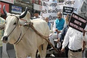 bjp protests against government for not reducing vat on petrol