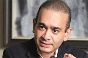 pnb scam neerav modi opposes ed s fugitive criminal petition
