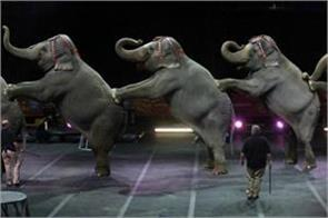 animals will not appear in the circus