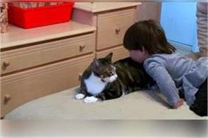cat leads mother to her daughter bedroom and sees terrifying sight