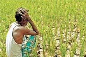 been affected notbandi farmers