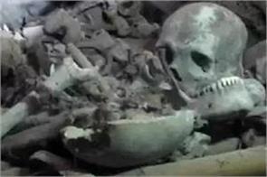 action in case of human skeletal