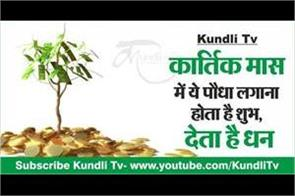 this plant gives you good health and wealth