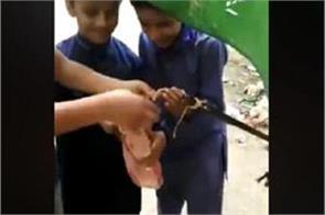 pakistani kids hang a doll to imitate hanging of asia bibi video viral