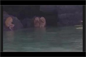 mysterious animal found at railay krabi thailand