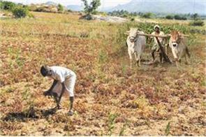 govt initiating multiple reforms for doubling farmers income