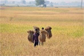 farmers also suffer from agricultural debt waiver on the farmers