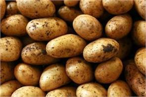 at the end of the season potato turned out to be worth rs 2 3 per kilo