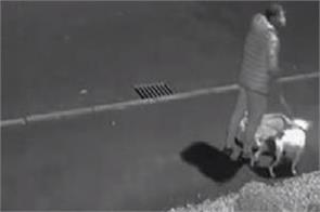 uk man abandons dog on roadside cctv footage viral