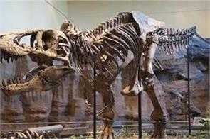 new giant dinosaur identified in russia