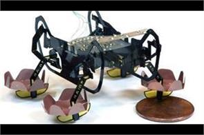 sticky footed new robot can climb on the wall