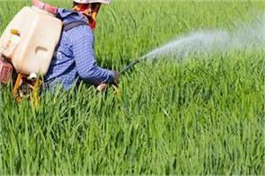 laws made against substandard pesticides chaudhary