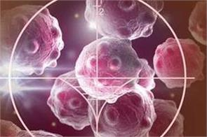 virtual tumour  to offer new treatment against cancer
