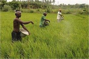 rabi crops decrease