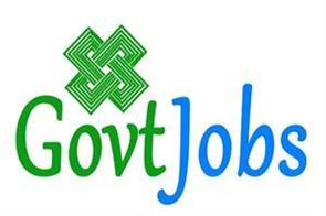 government jobs in this department soon get the application