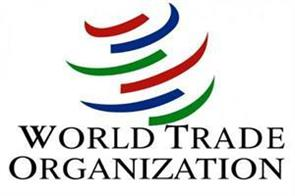 china  russia fail to adopt wto policies  usa