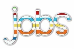 icds   job  salary  candidate  bihar