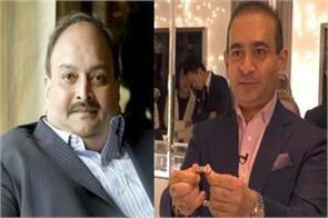 ed seeks information from other countries about the nirav and choksi business